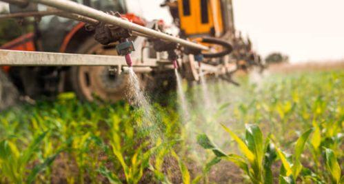 ¿Que son los pesticidas?