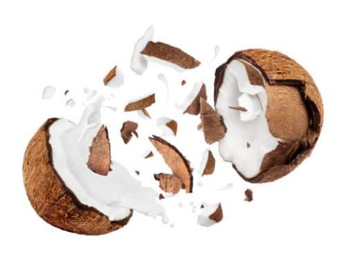 La historia del coco